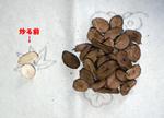 Coffee06_2